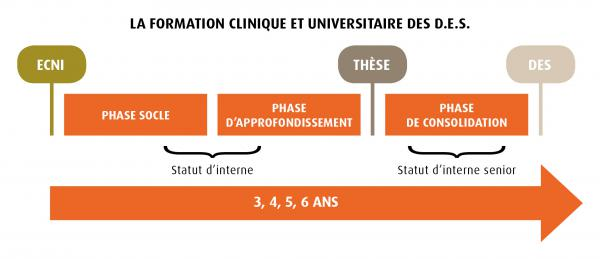 Formation clinique univ des reference